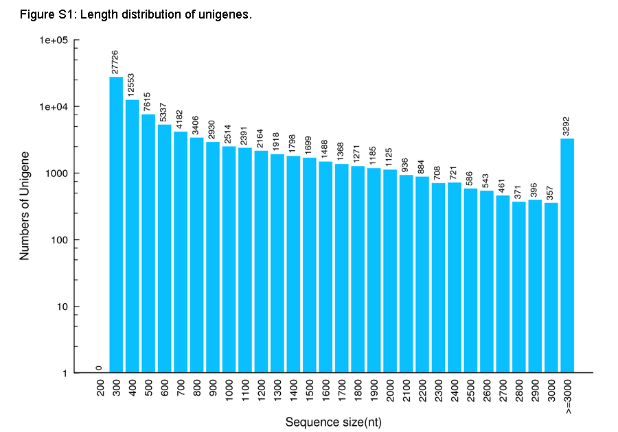 figure s1 length distribution of unigenes